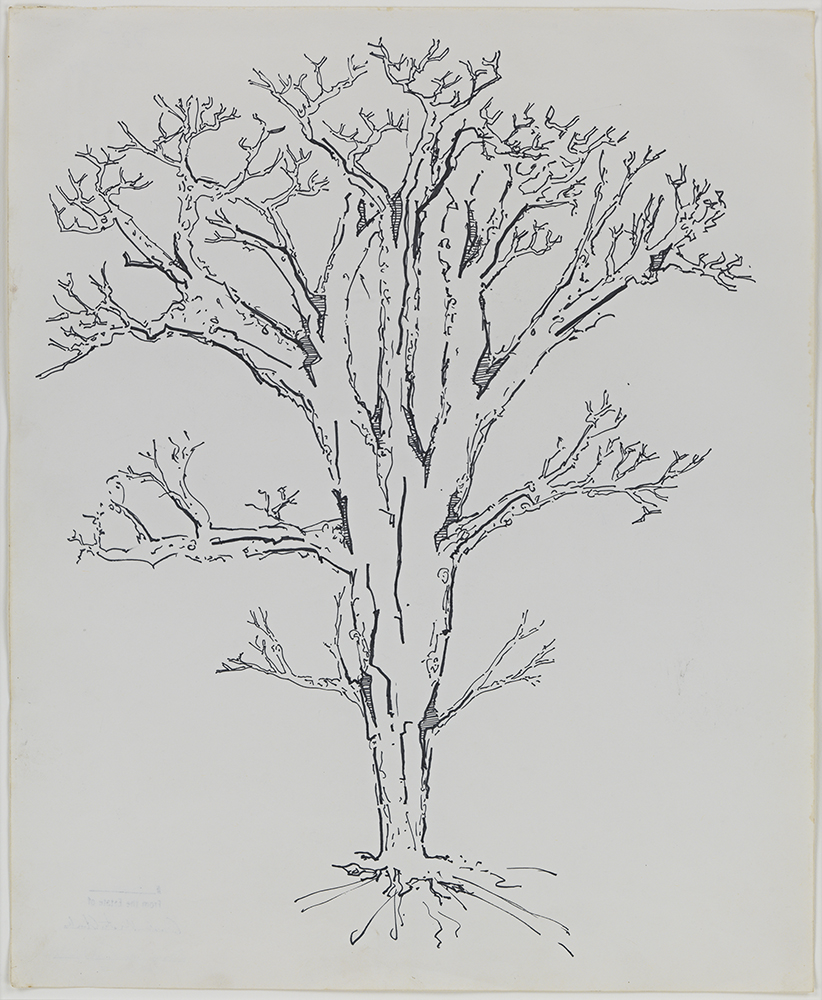 Gordon Matta Clark, Energy Tree; photo via Zwirner